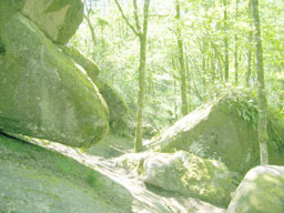 Le rocher des fées